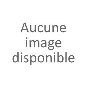 NOYAUIX D'ABRICOTS en Poudre